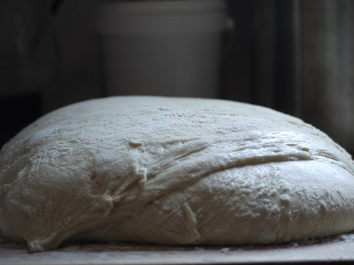 """Ciabatta after first rise"" by Rebecca Siegel"